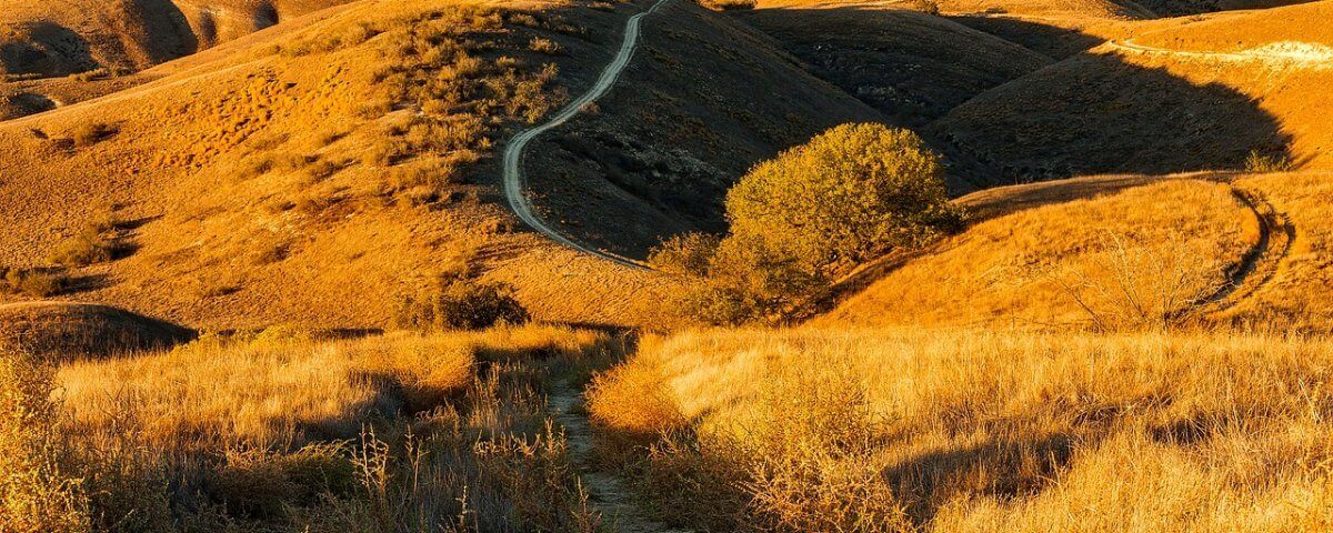Hills in California Source Pixabay